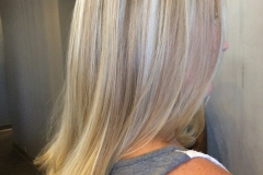 Hair blend highlights red to platinum blonde abq