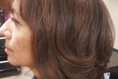 layered Bob haircut, caramel highlights, all over brown hair color