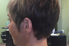 short-haircuts-for-women-highlights-lowlights