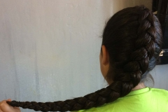 Simple Dutch braid - abq